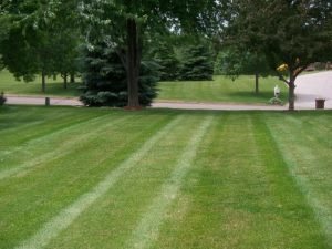 Woodbury Lawn Care