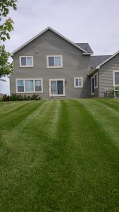 Woodbury Lawn Mowing